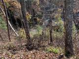 Lot 5 Old Cartertown Road - Photo 6