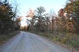 Peavine Firetower Rd - Photo 1