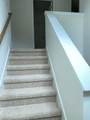 12134 Evergreen Terrace Lane - Photo 14