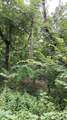 10.18 Acre Stump Hollow Rd - Photo 3