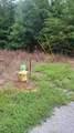 10.18 Acre Stump Hollow Rd - Photo 8