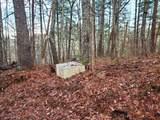 2520 Elks Point Rd - Photo 4
