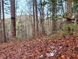 2520 Elks Point Rd - Photo 7