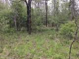 White Oak Creek Lane Lot 16 - Photo 12