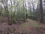 White Oak Creek Lane Lot 17 - Photo 1