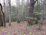 White Oak Creek Lane Lot 17 - Photo 5