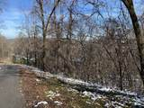 Cove Mountain Lane - Photo 6