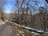 Cove Mountain Lane - Photo 7