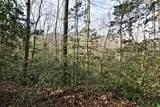 32.8 acres Elrod Circle - Photo 18