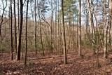 32.8 acres Elrod Circle - Photo 22