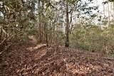 32.8 acres Elrod Circle - Photo 30