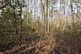 32.8 acres Elrod Circle - Photo 32