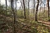 32.8 acres Elrod Circle - Photo 34