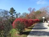 2909 Walkup Drive - Photo 6