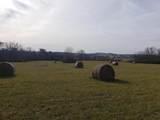 Lot 82Ee Equestrian Ridge - Photo 12