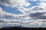 000 County Road 782 - Photo 11