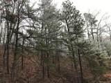 Overholt Trail - Photo 2