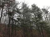 Overholt Trail - Photo 3