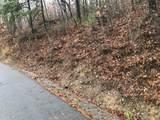 Overholt Trail - Photo 4