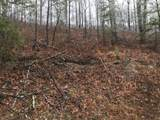 Overholt Trail - Photo 6