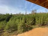 Owens Ridge Way - Photo 8