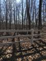 4749 Rest Camp Rd - Photo 2