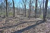 Lot 6 & 7 French Broad River Rd - Photo 10