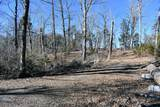 Lot 6 & 7 French Broad River Rd - Photo 14