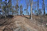 Lot 6 & 7 French Broad River Rd - Photo 7
