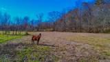 1541 Lower English Creek Rd - Photo 13
