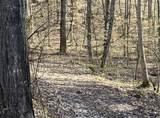 2410 Spence Mountain Loop - Photo 6
