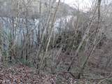 Lot 46 Holston River Drive - Photo 5