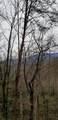 006 Alpenrose Rd - Photo 3