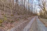 37 Acres Turkey Hollow Lane - Photo 10