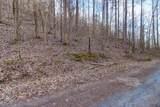 37 Acres Turkey Hollow Lane - Photo 11