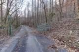 37 Acres Turkey Hollow Lane - Photo 12