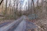 37 Acres Turkey Hollow Lane - Photo 13