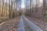 37 Acres Turkey Hollow Lane - Photo 15