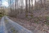 37 Acres Turkey Hollow Lane - Photo 16
