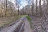 37 Acres Turkey Hollow Lane - Photo 17