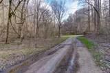 37 Acres Turkey Hollow Lane - Photo 18