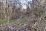 37 Acres Turkey Hollow Lane - Photo 2