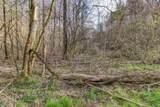 37 Acres Turkey Hollow Lane - Photo 3