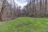 37 Acres Turkey Hollow Lane - Photo 5