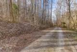 37 Acres Turkey Hollow Lane - Photo 6