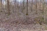 37 Acres Turkey Hollow Lane - Photo 7