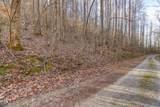 37 Acres Turkey Hollow Lane - Photo 8