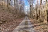 37 Acres Turkey Hollow Lane - Photo 9