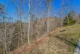 Lot #65 Smoky Ridge Way - Photo 5