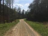 23.56 Acres Way - Photo 5